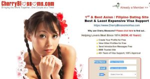 best-asian-dating-sites-cherry-blossoms